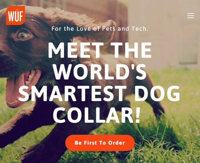 Wuf The World S Smartest Dog Collar Techcabal