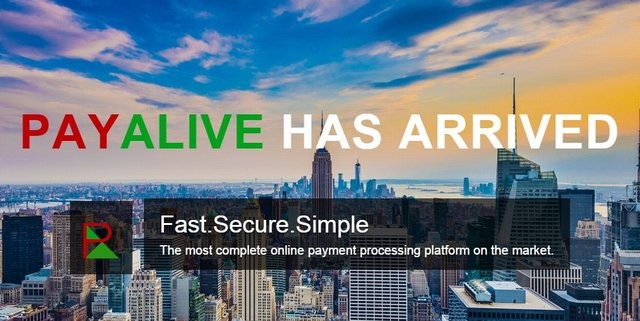 PayAlive is a Payment Processing Service in Zimbabwe