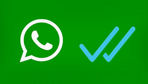 WhatsApp: How to Backup on Google Drive
