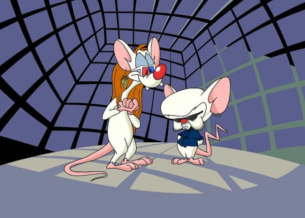 Pinky & Brain