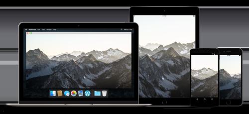 responsive-devices-desktop-1x