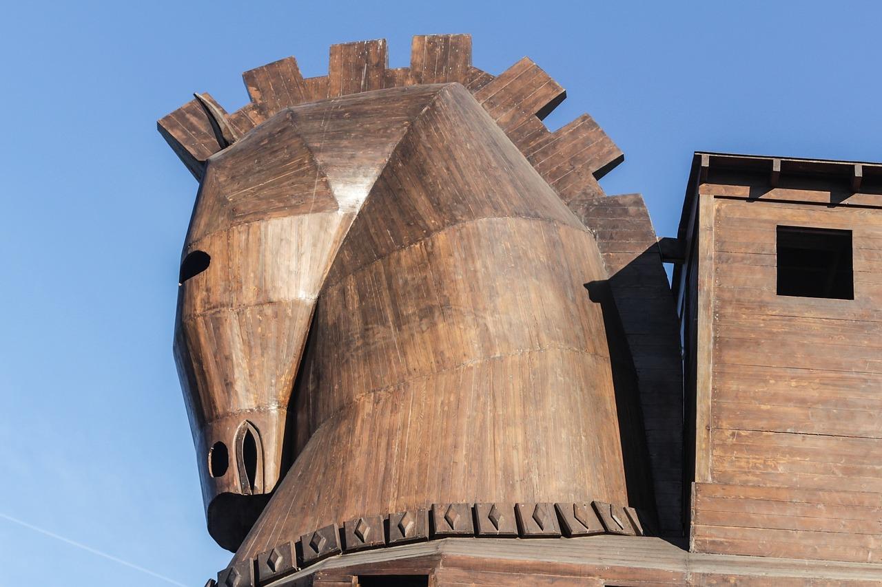 Digest: Showmax's Trojan Horse
